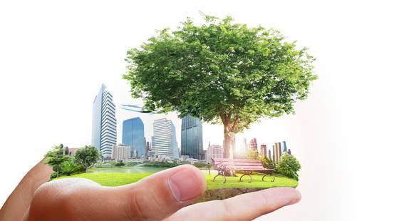 Risultati immagini per città verde