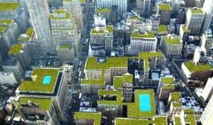 tetto-verde-giardino